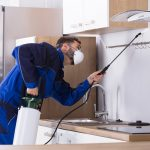 Signs That Will Suggest Your Need for Pest Control Services