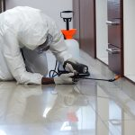 Pest Control for Your Home: Easy and Effective Methods