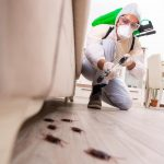 Basic Pest Control Processes and Equipment
