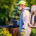 Why Is Pest Control Necessary?